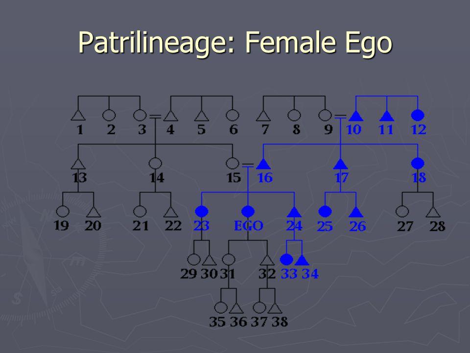 Patrilineage: Female Ego