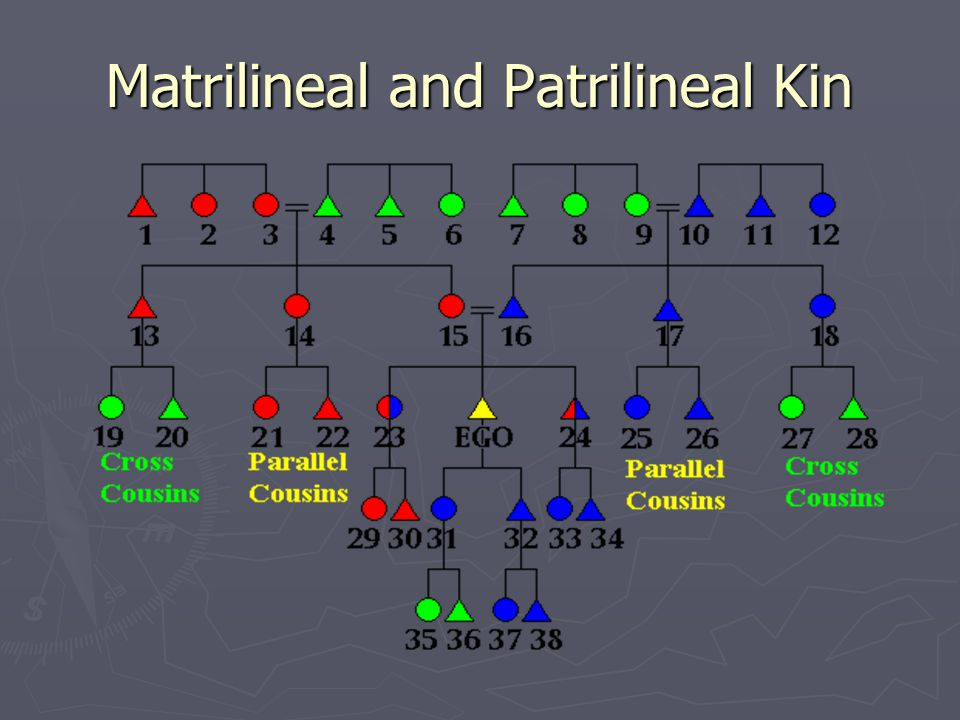Matrilineal and Patrilineal Kin