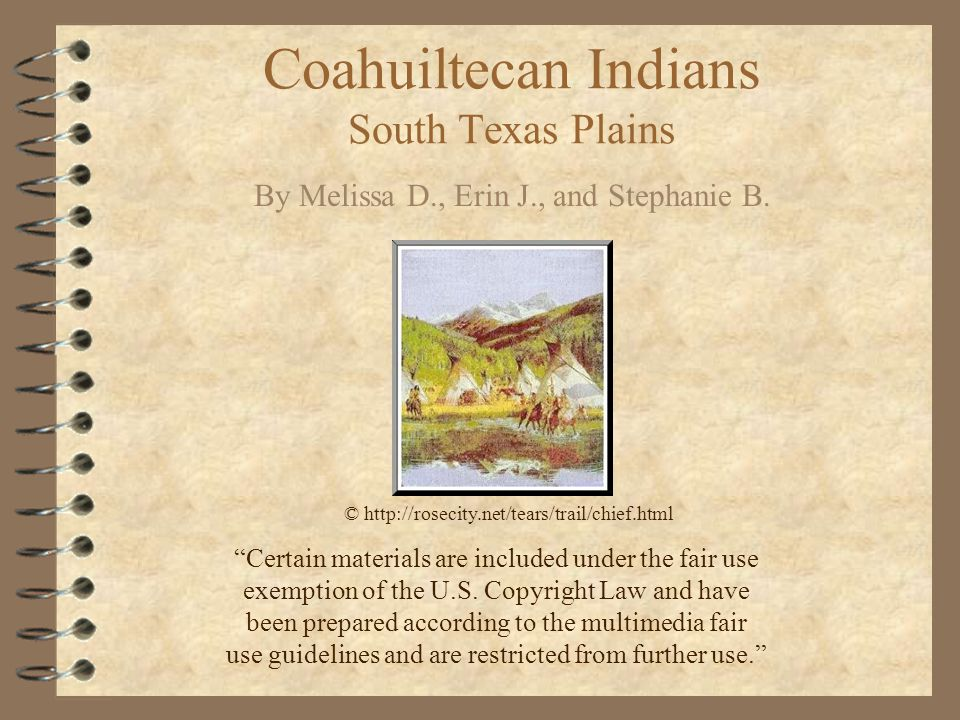 Coahuiltecan Indians South Texas Plains