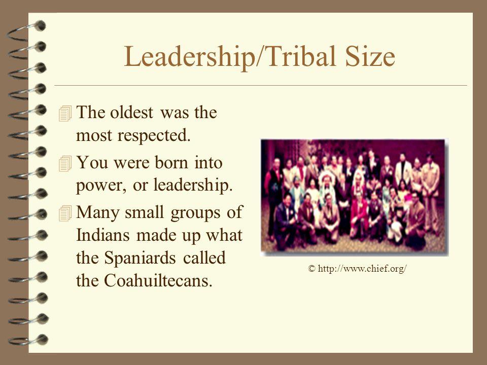 Leadership/Tribal Size