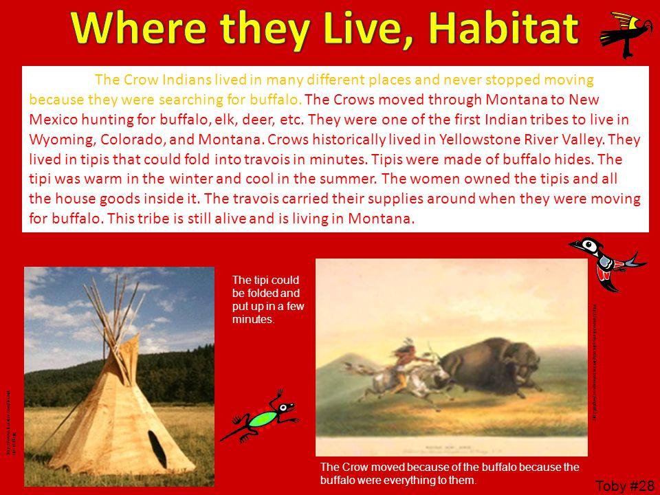Where they Live, Habitat