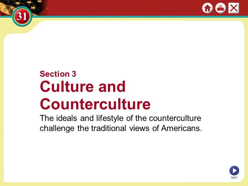 Culture and Counterculture Section 3