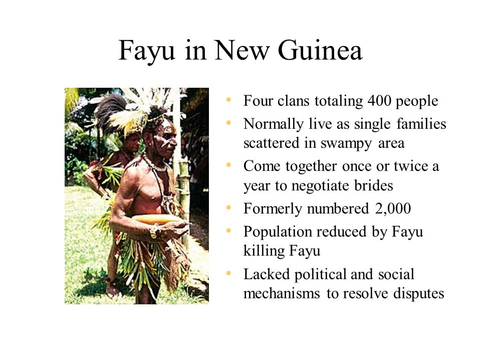 Fayu in New Guinea Four clans totaling 400 people