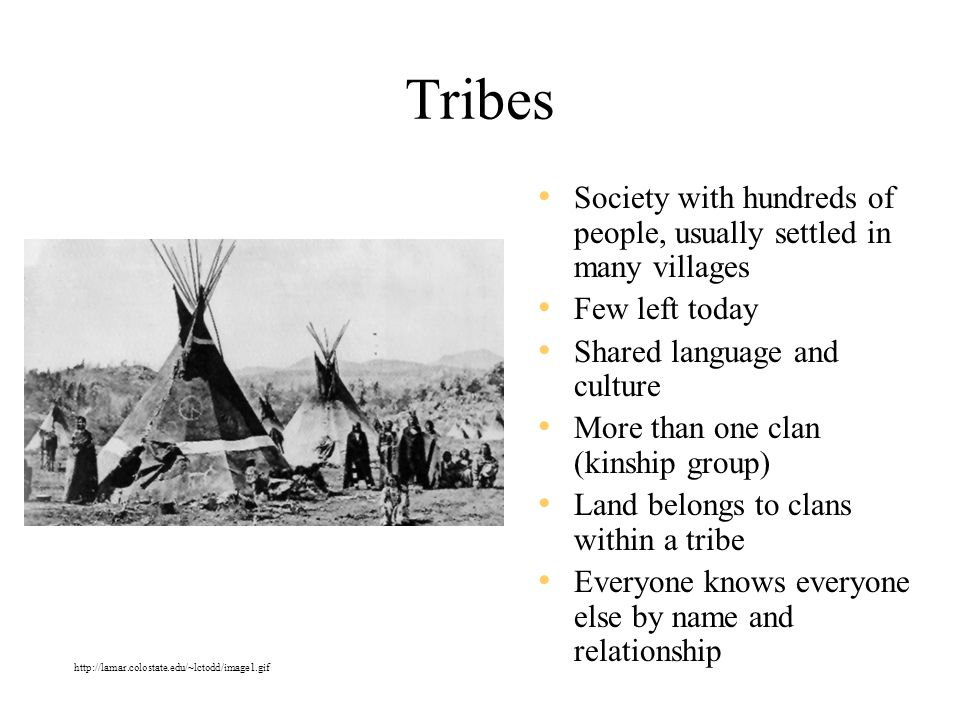 Tribes Society with hundreds of people, usually settled in many villages. Few left today. Shared language and culture.