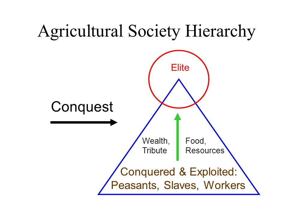 Agricultural Society Hierarchy