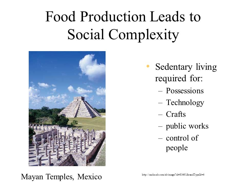 Food Production Leads to Social Complexity