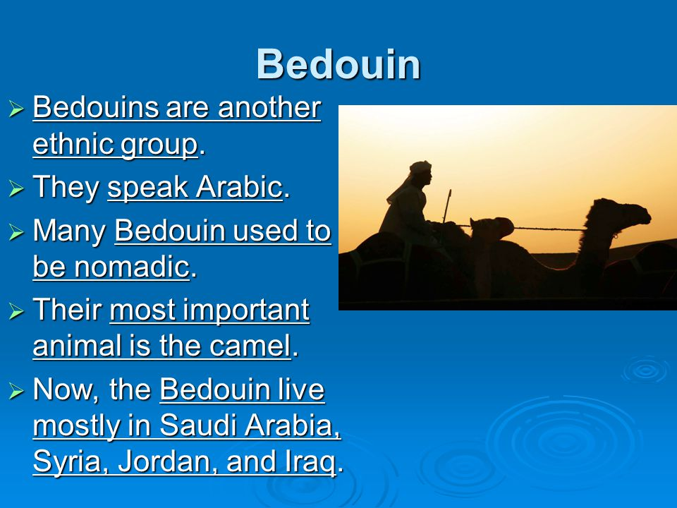 Bedouin Bedouins are another ethnic group. They speak Arabic.