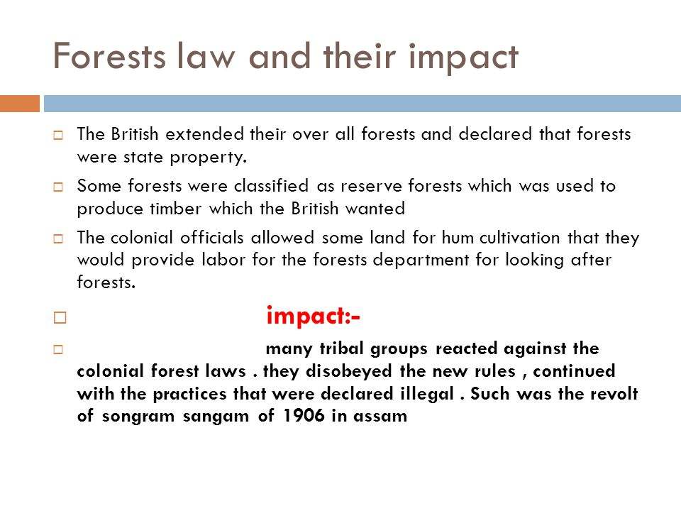 Forests law and their impact