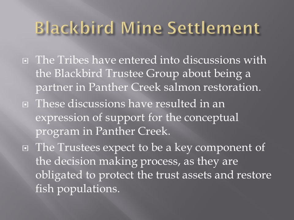 Blackbird Mine Settlement