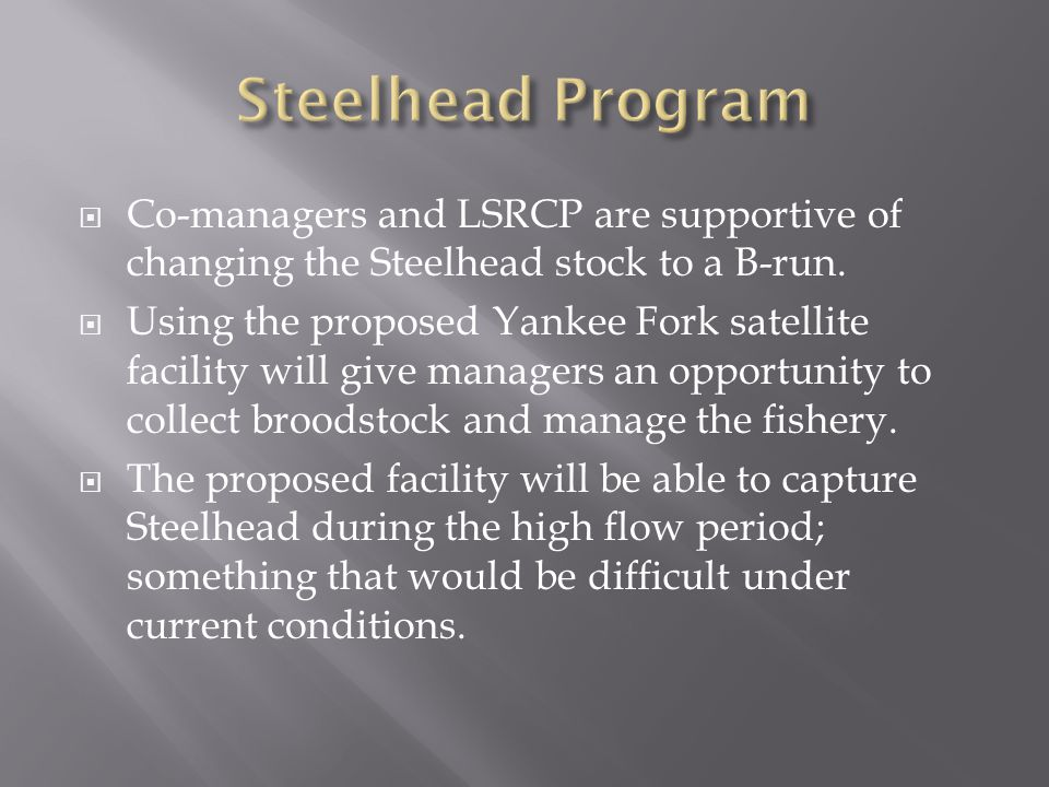 Steelhead Program Co-managers and LSRCP are supportive of changing the Steelhead stock to a B-run.