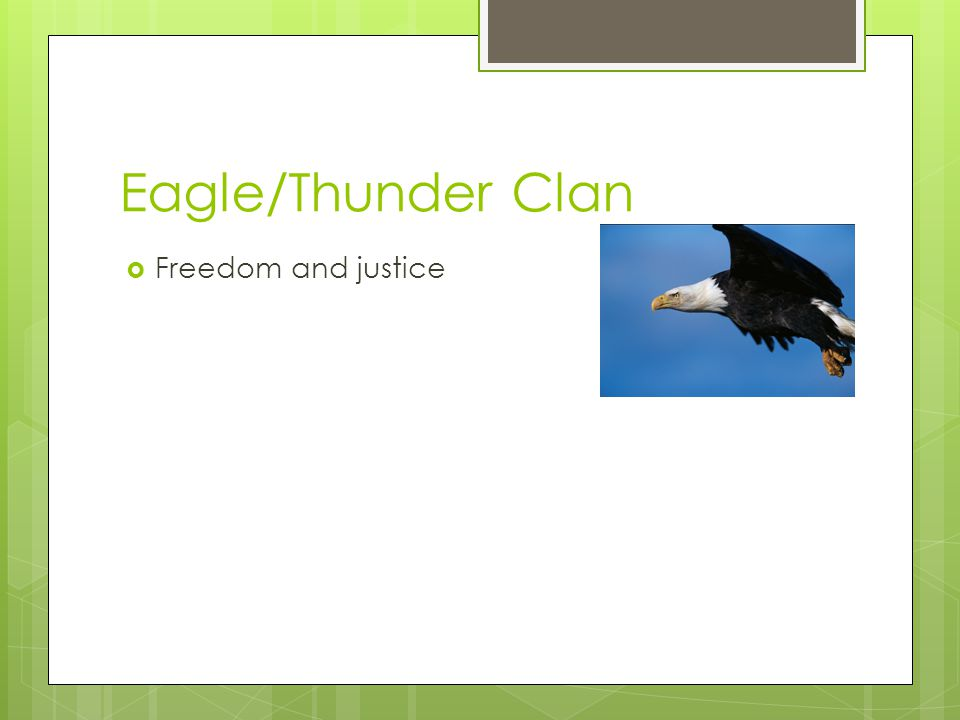 Eagle/Thunder Clan Freedom and justice