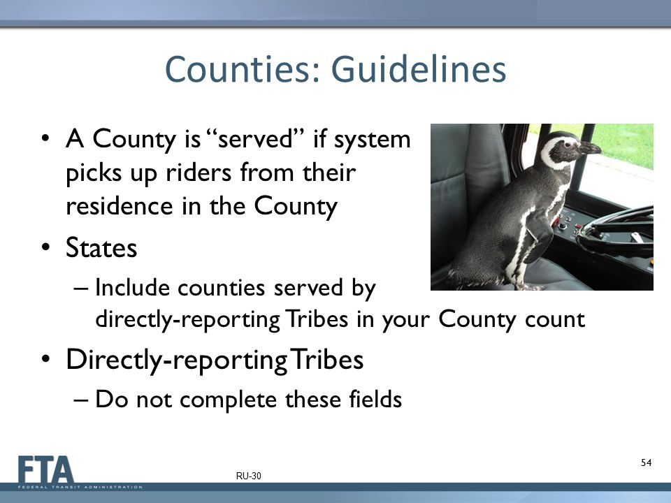 Counties: Guidelines States Directly-reporting Tribes