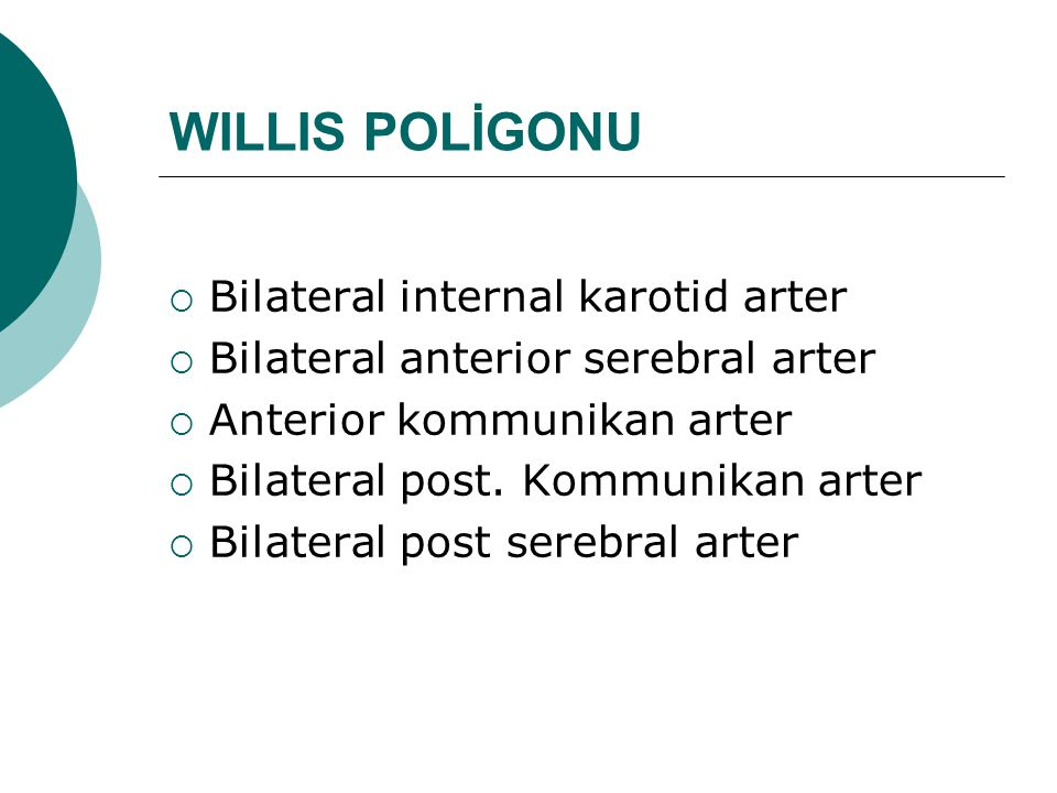 WILLIS POLİGONU Bilateral internal karotid arter
