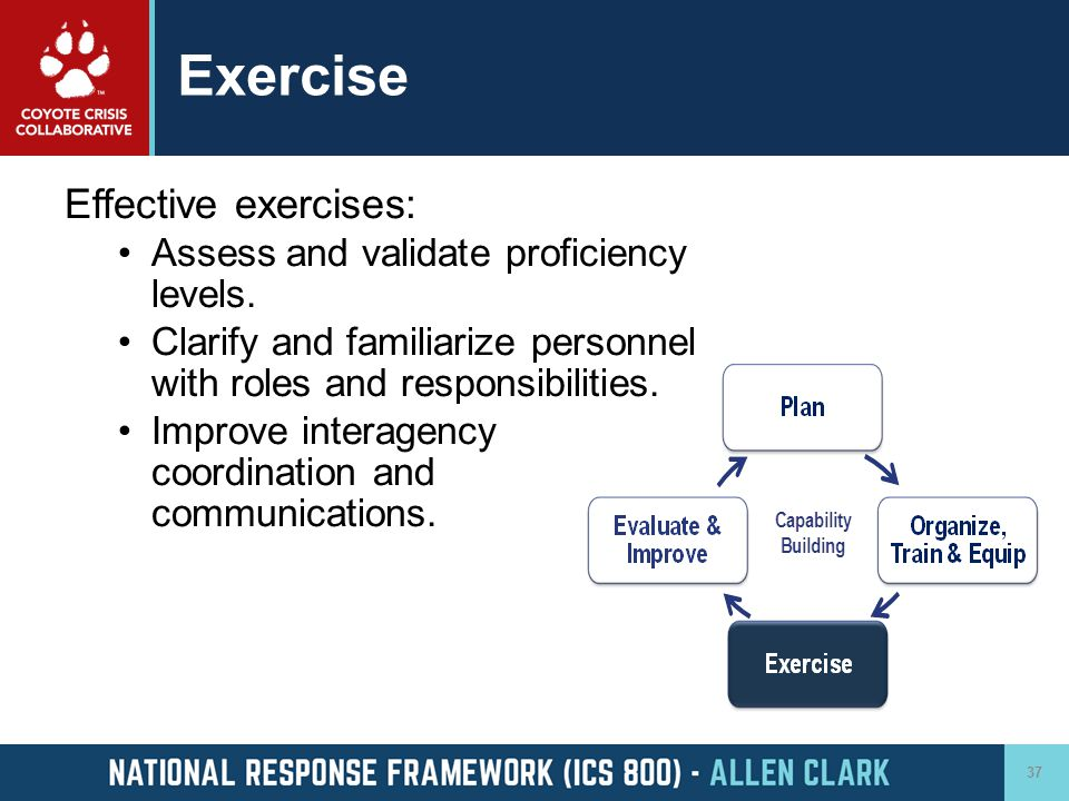 Exercise Effective exercises: Assess and validate proficiency levels.