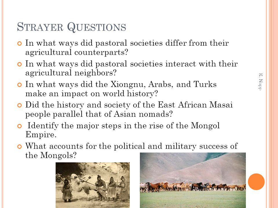 Strayer Questions In what ways did pastoral societies differ from their agricultural counterparts