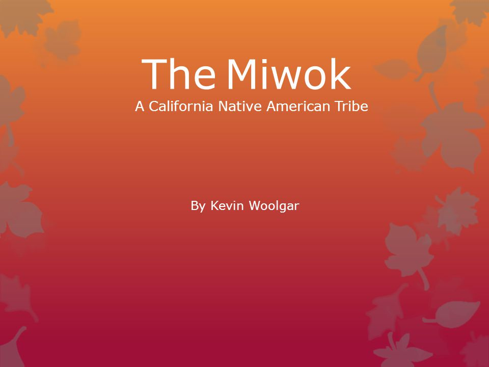 The Miwok A California Native American Tribe