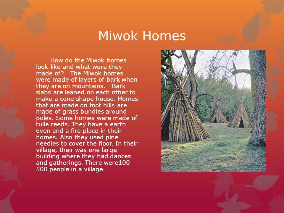 Miwok Homes