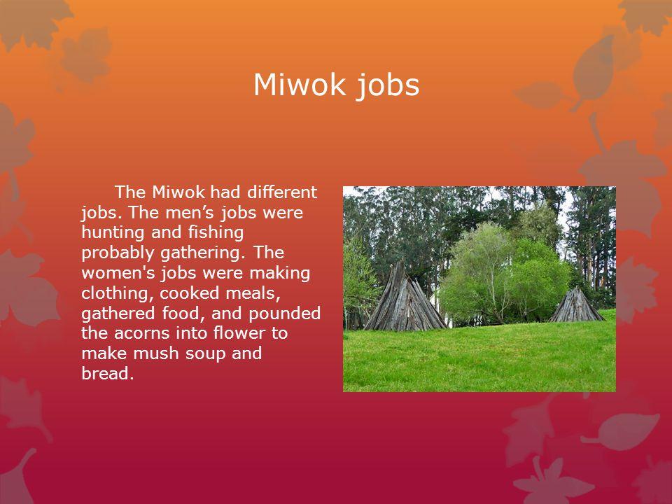 Miwok jobs