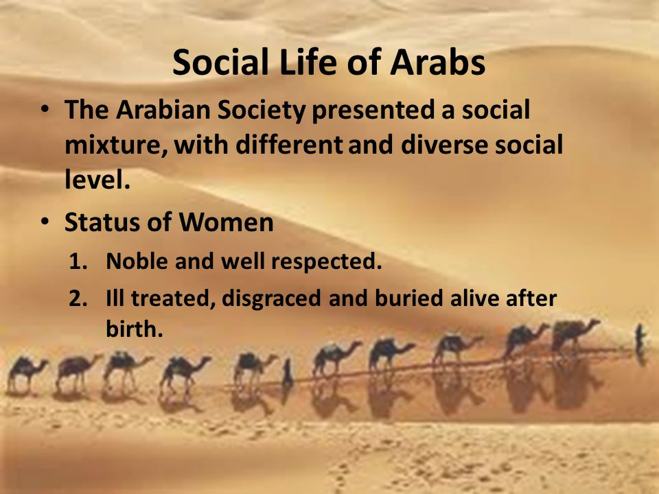 Social Life of Arabs The Arabian Society presented a social mixture, with different and diverse social level.