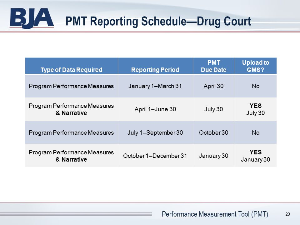 PMT Reporting Schedule—Drug Court