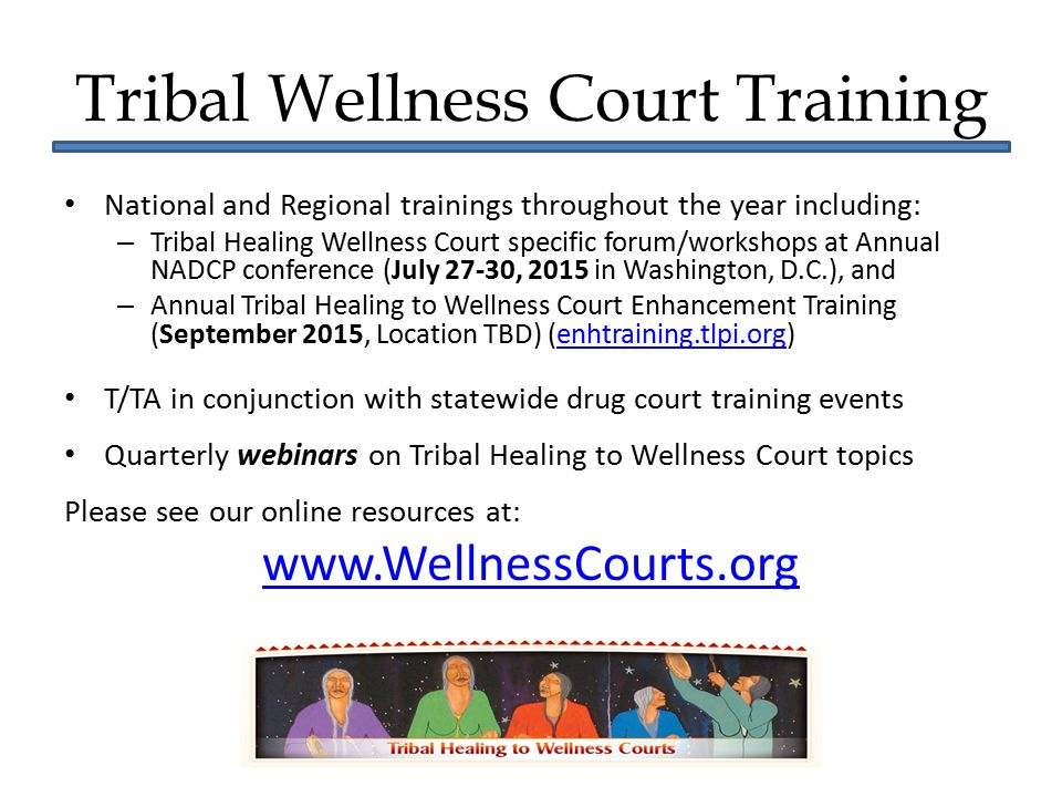 Tribal Wellness Court Training