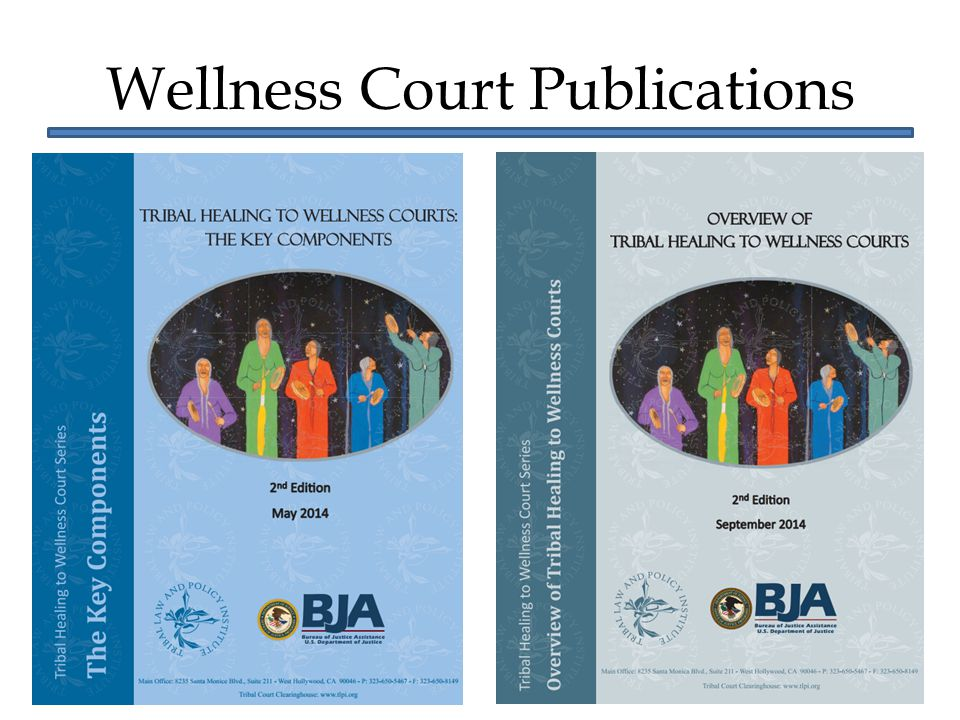Wellness Court Publications