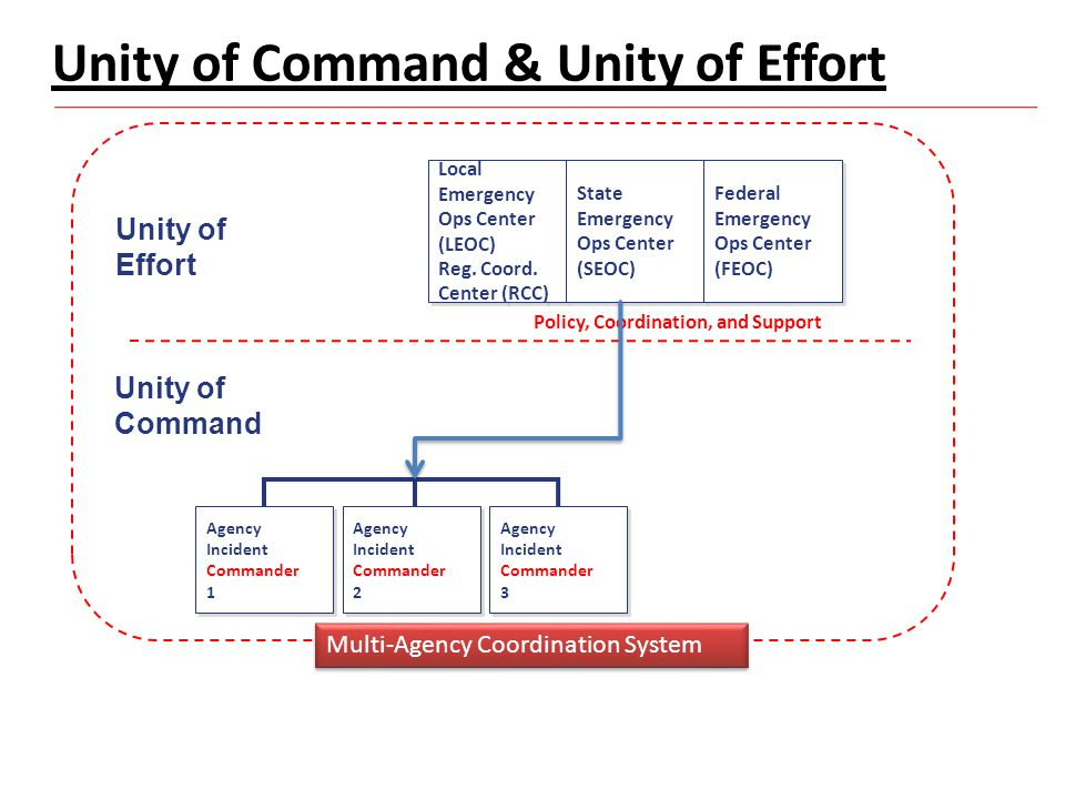 Unity of Command & Unity of Effort