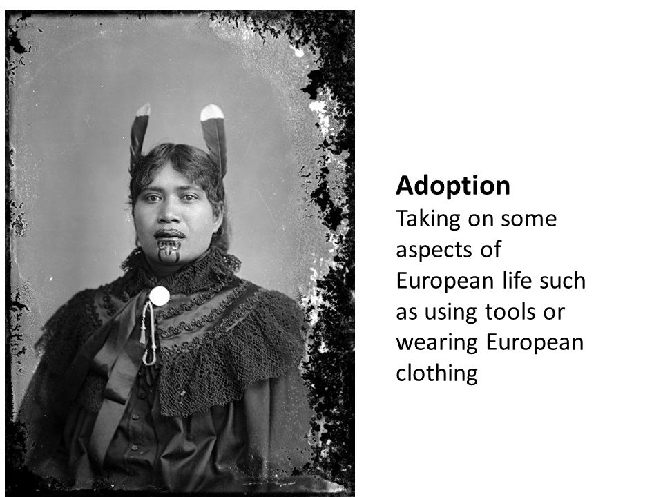 Adoption Taking on some aspects of European life such as using tools or wearing European clothing.