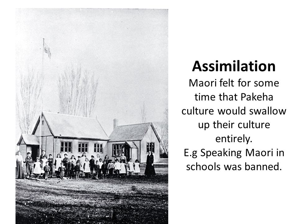 Assimilation Maori felt for some time that Pakeha culture would swallow up their culture entirely. E.g Speaking Maori in schools was banned.