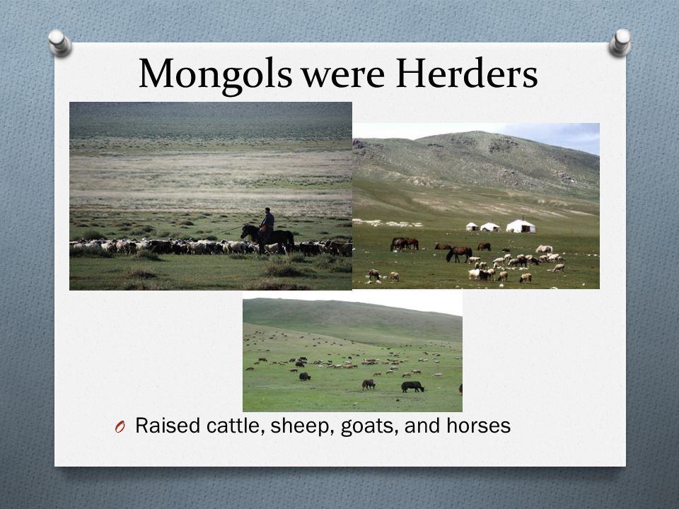 Mongols were Herders Raised cattle, sheep, goats, and horses
