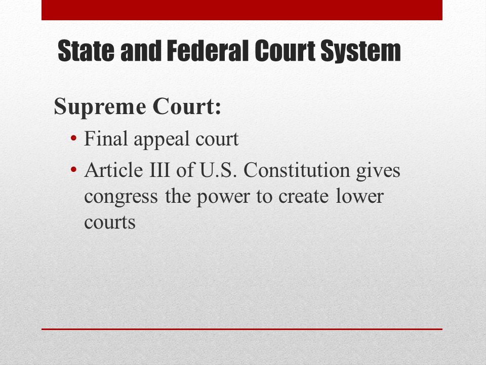 State and Federal Court System
