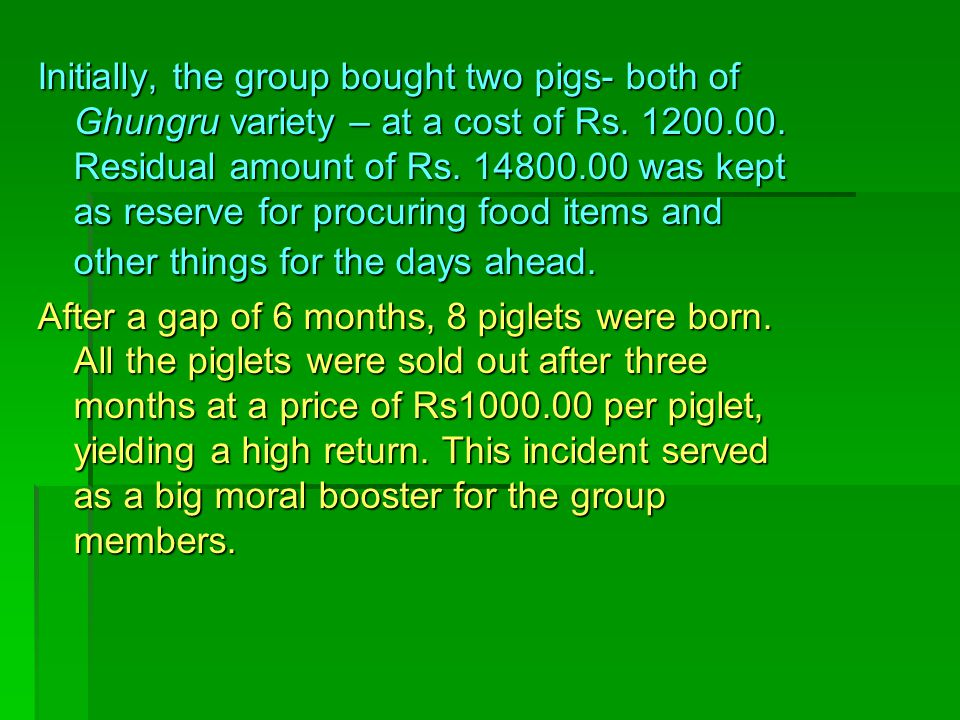 Initially, the group bought two pigs- both of Ghungru variety – at a cost of Rs. 1200.00. Residual amount of Rs. 14800.00 was kept as reserve for procuring food items and other things for the days ahead.