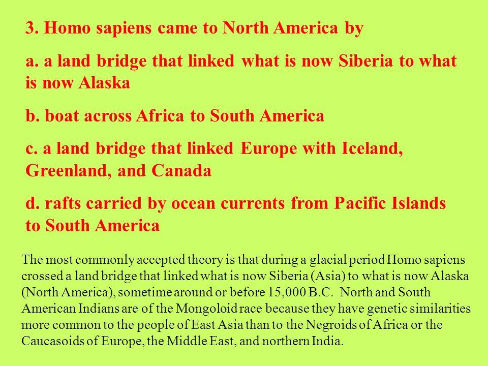 3. Homo sapiens came to North America by