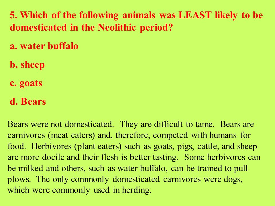 5. Which of the following animals was LEAST likely to be domesticated in the Neolithic period