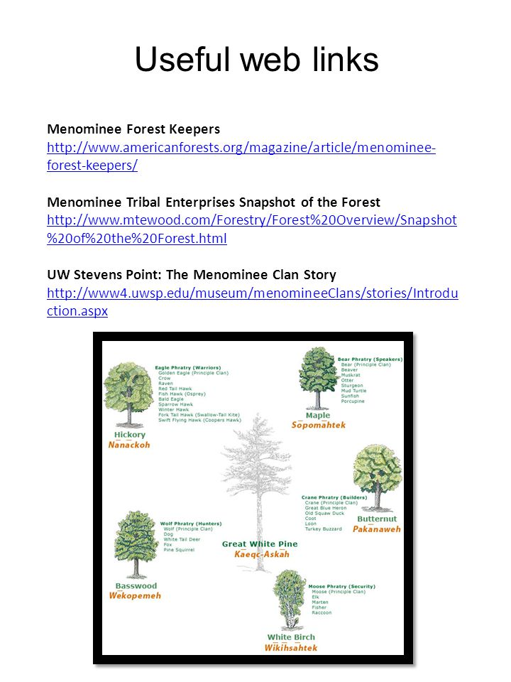Useful web links Menominee Forest Keepers