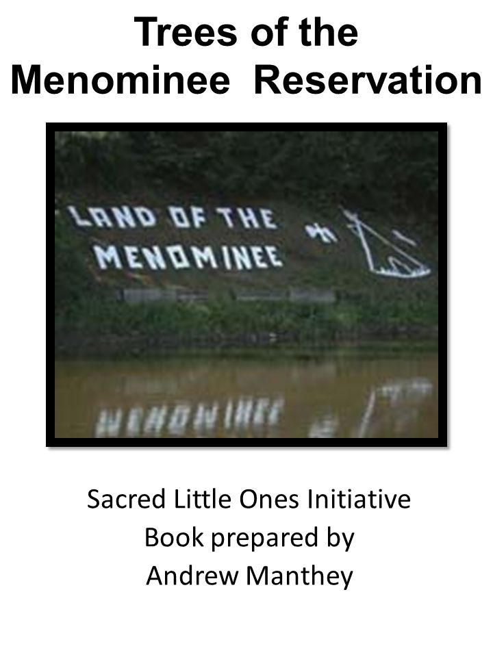Trees of the Menominee Reservation