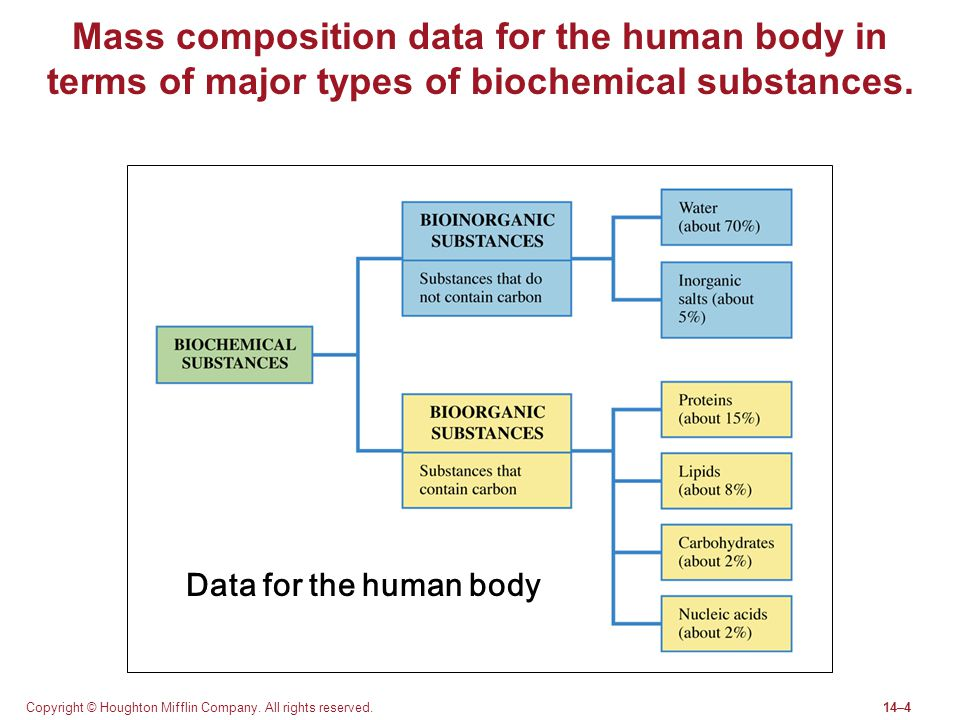 Mass composition data for the human body in terms of major types of biochemical substances.