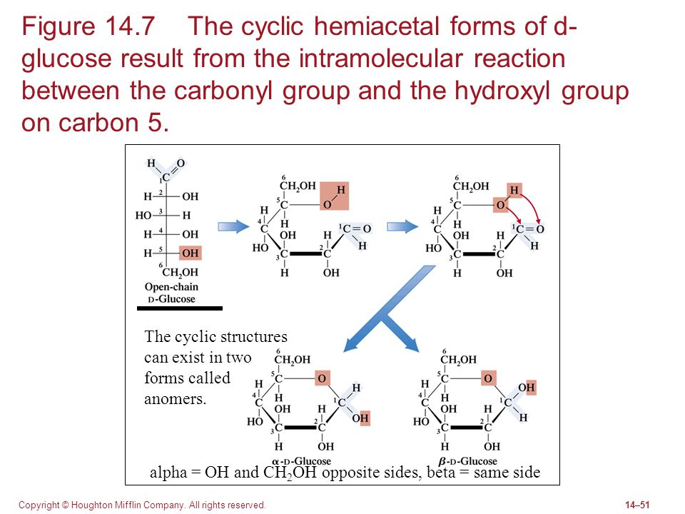 Figure 14.7 The cyclic hemiacetal forms of d-glucose result from the intramolecular reaction between the carbonyl group and the hydroxyl group on carbon 5.