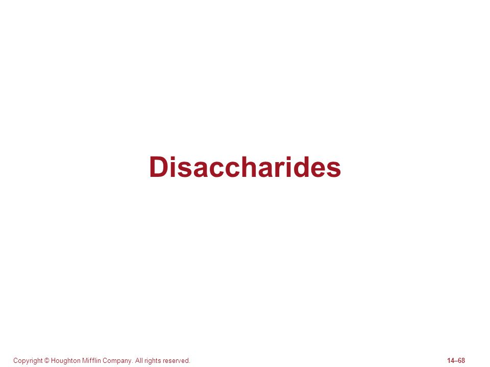 Disaccharides Copyright © Houghton Mifflin Company. All rights reserved.