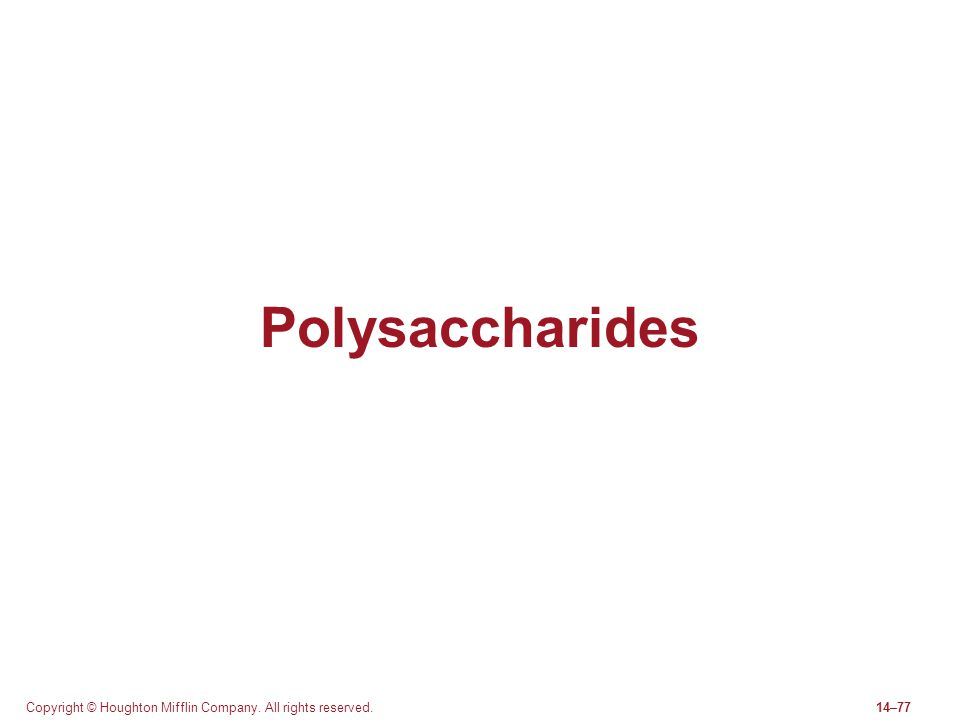 Polysaccharides Copyright © Houghton Mifflin Company. All rights reserved.