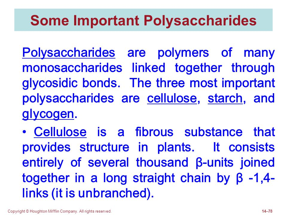 Some Important Polysaccharides