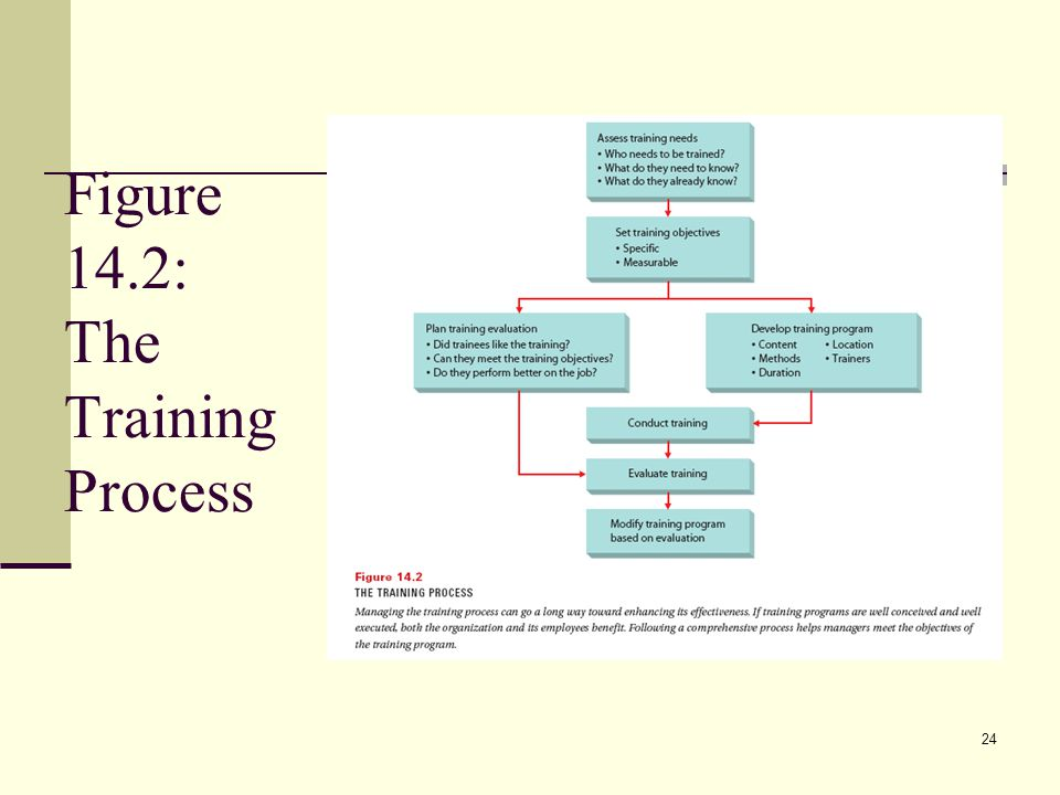Figure 14.2: The Training Process