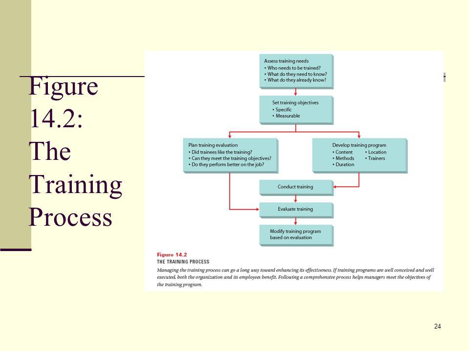 Figure 14.2: The Training Process