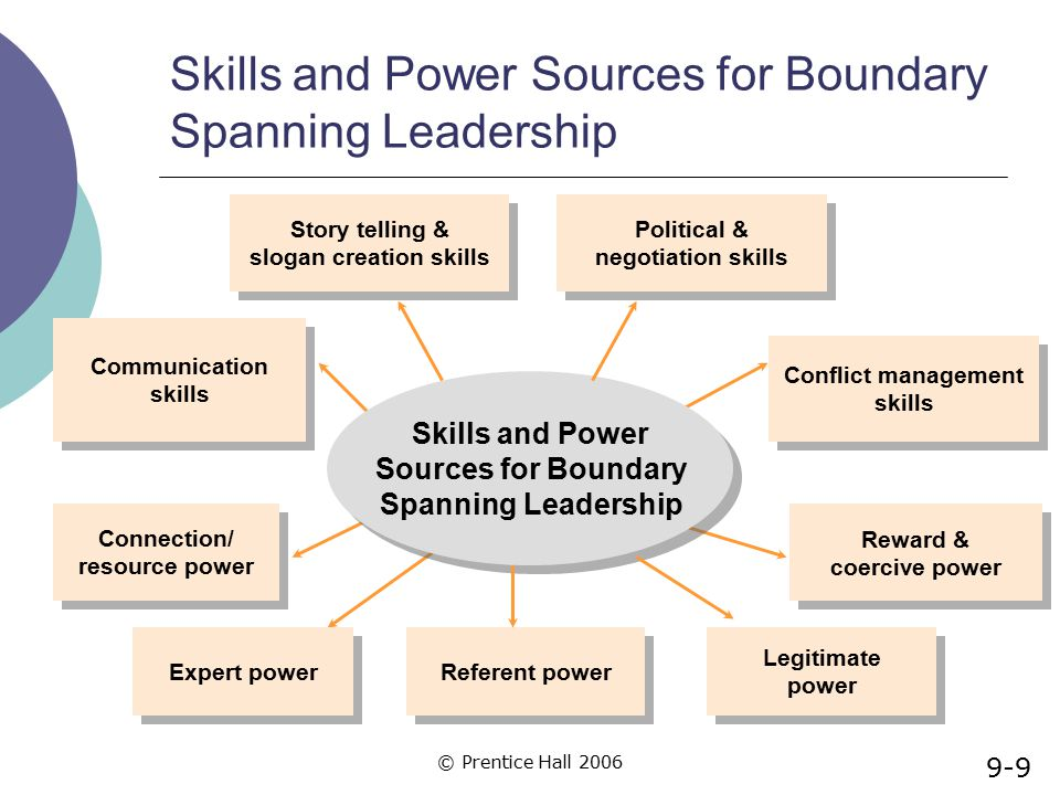 Skills and Power Sources for Boundary Spanning Leadership