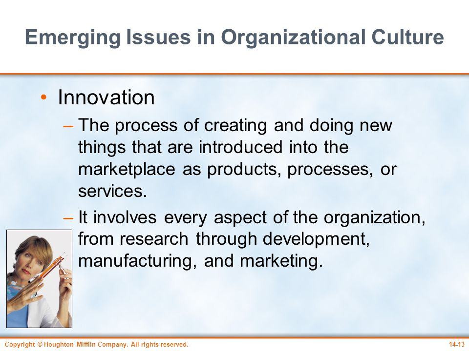 Emerging Issues in Organizational Culture