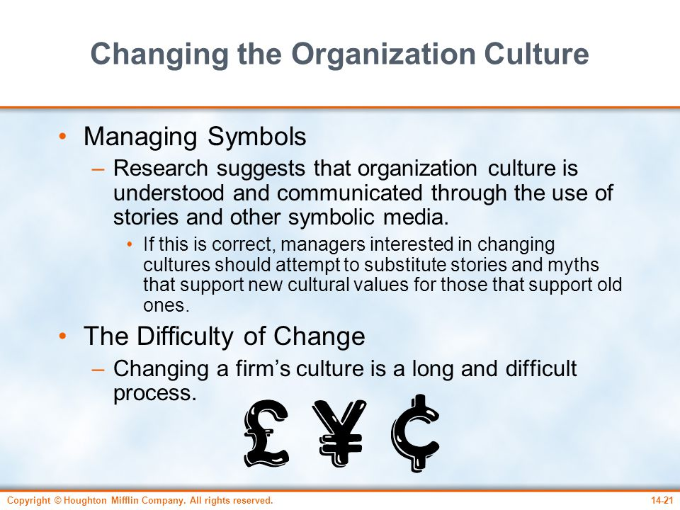 Changing the Organization Culture