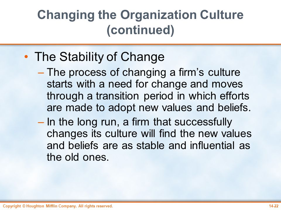 Changing the Organization Culture (continued)