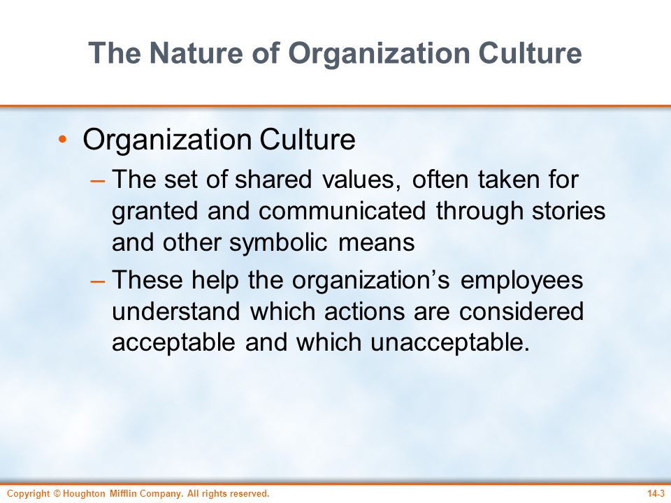 The Nature of Organization Culture