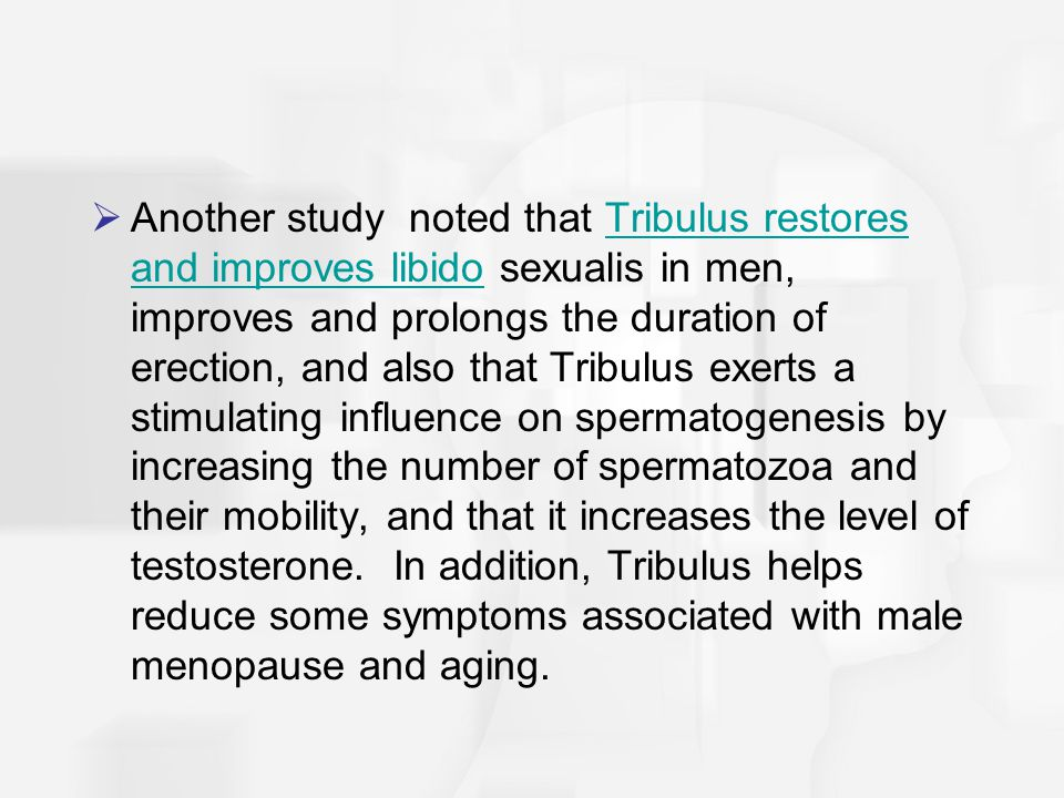 Another study noted that Tribulus restores and improves libido sexualis in men, improves and prolongs the duration of erection, and also that Tribulus exerts a stimulating influence on spermatogenesis by increasing the number of spermatozoa and their mobility, and that it increases the level of testosterone. In addition, Tribulus helps reduce some symptoms associated with male menopause and aging.
