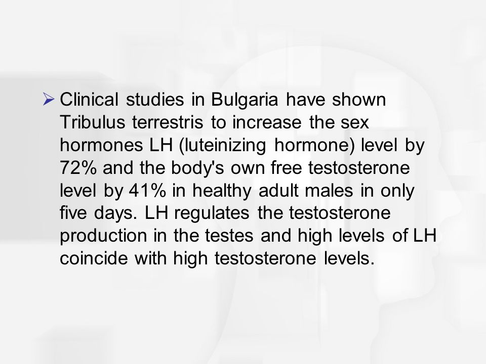 Clinical studies in Bulgaria have shown Tribulus terrestris to increase the sex hormones LH (luteinizing hormone) level by 72% and the body s own free testosterone level by 41% in healthy adult males in only five days.